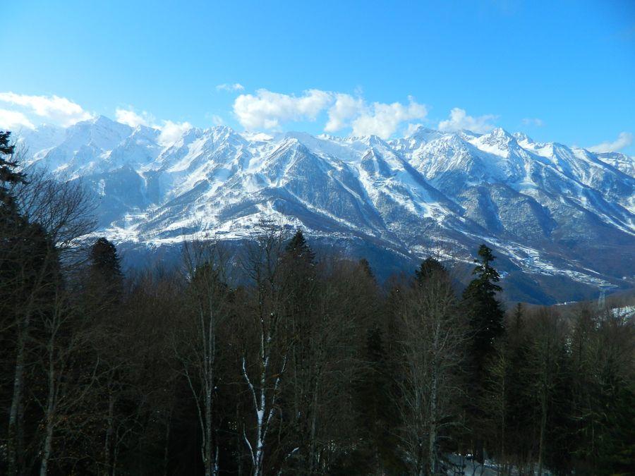 Alpika Servis
